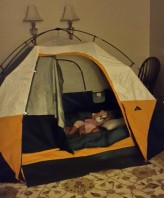 A_Living_room_tent_may2015